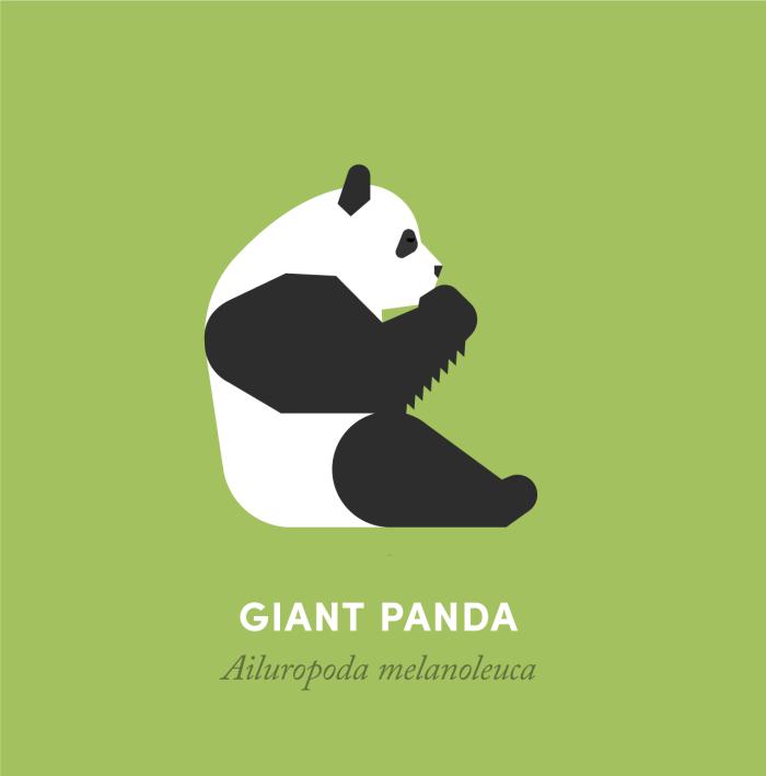 16-panda