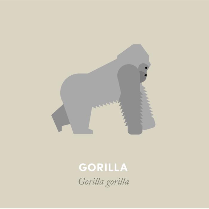 9-gorilla