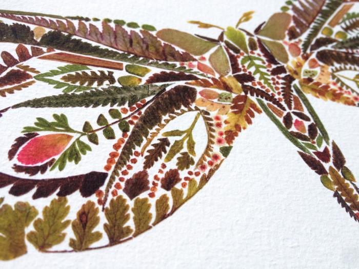 plants-2Helen Ahpornsiri - Butterfly (2)