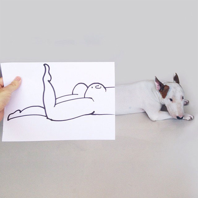 rafael-mantesso-takes-portraits-of-his-bull-terrier-and-illustrates-the-background-3