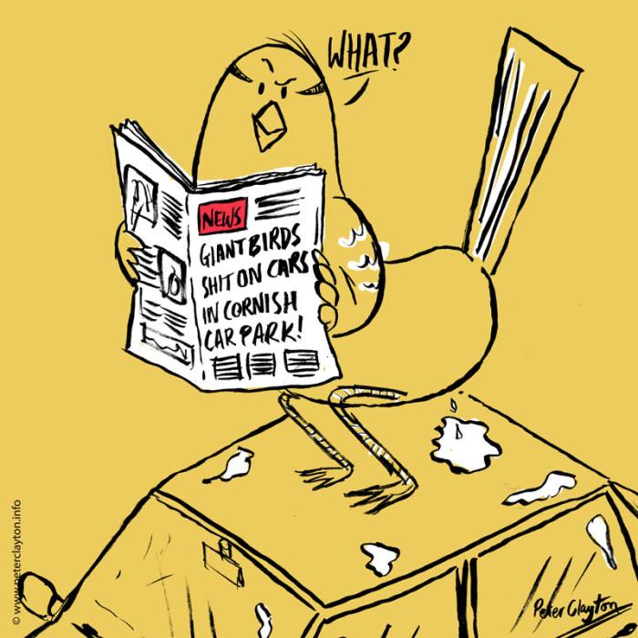 bird-crap-on-car-peter-clayton