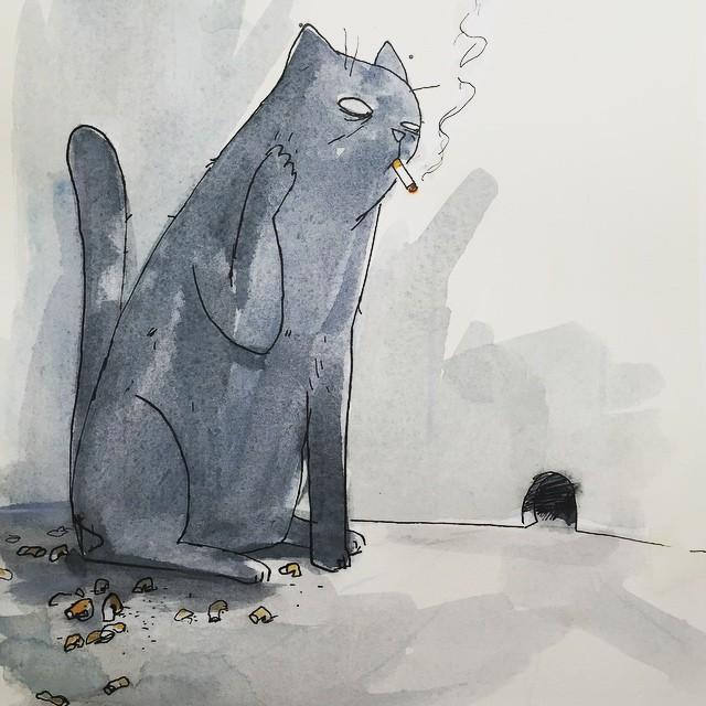 patientcat