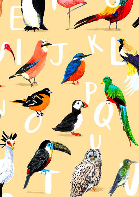 Avian Alphabet_Extract_BirdlifeExhibition_creditSarahEdmonds