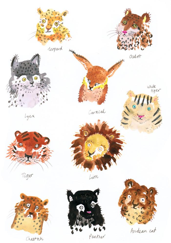 Big_Cats_web