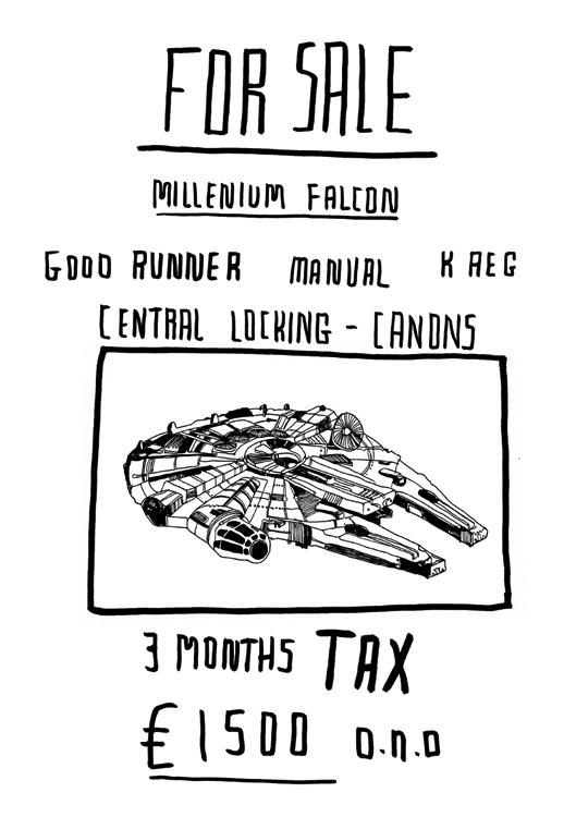 Falcon-for-sale
