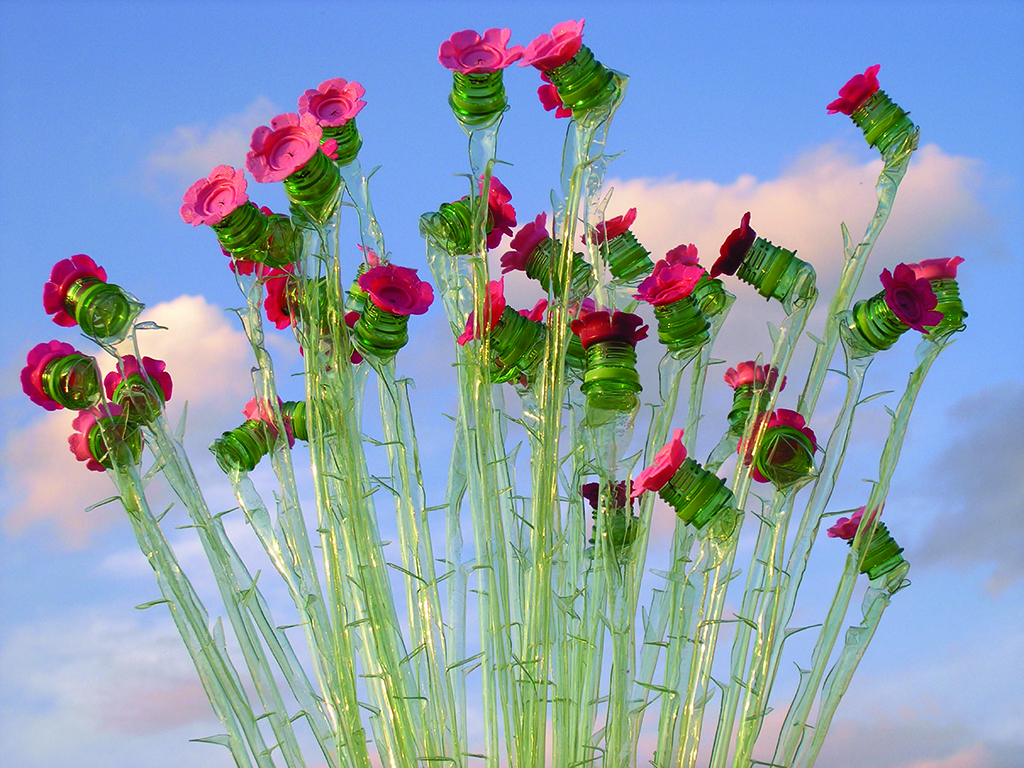 rosesPETMCihlar